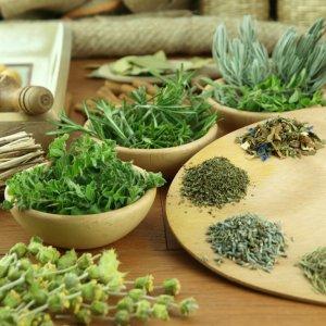 Трава для очистки кишечника