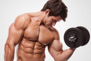 лучшие курсы набора мышечной массы
