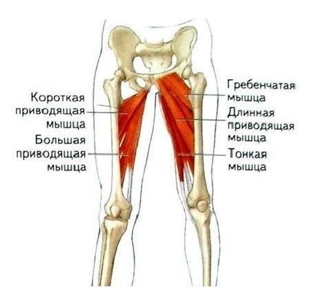Упражнения для внутренней стороны ног