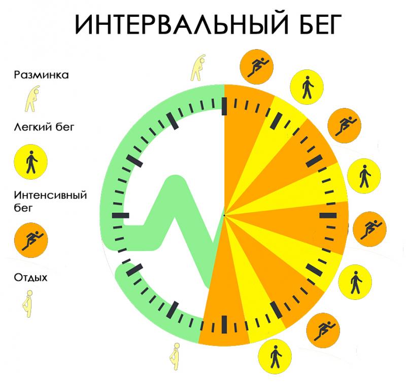Скорость Оптимального Похудения. Сколько кг можно сбросить за месяц при правильном питании: норма похудения?