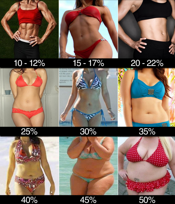 Висцеральный жир норма для мужчин